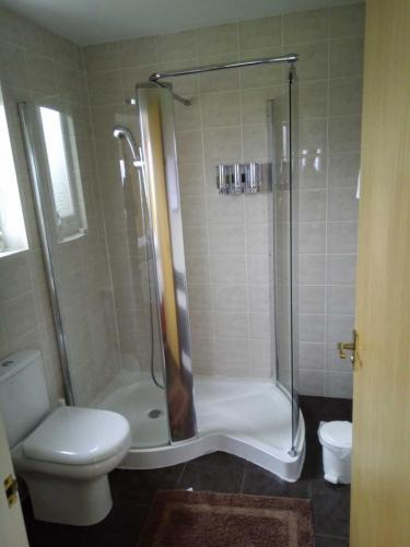 Twin Shower